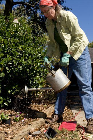Conoce todos los cuidados y usos de las plantas para tener un hogar feliz