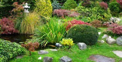jardín decoración