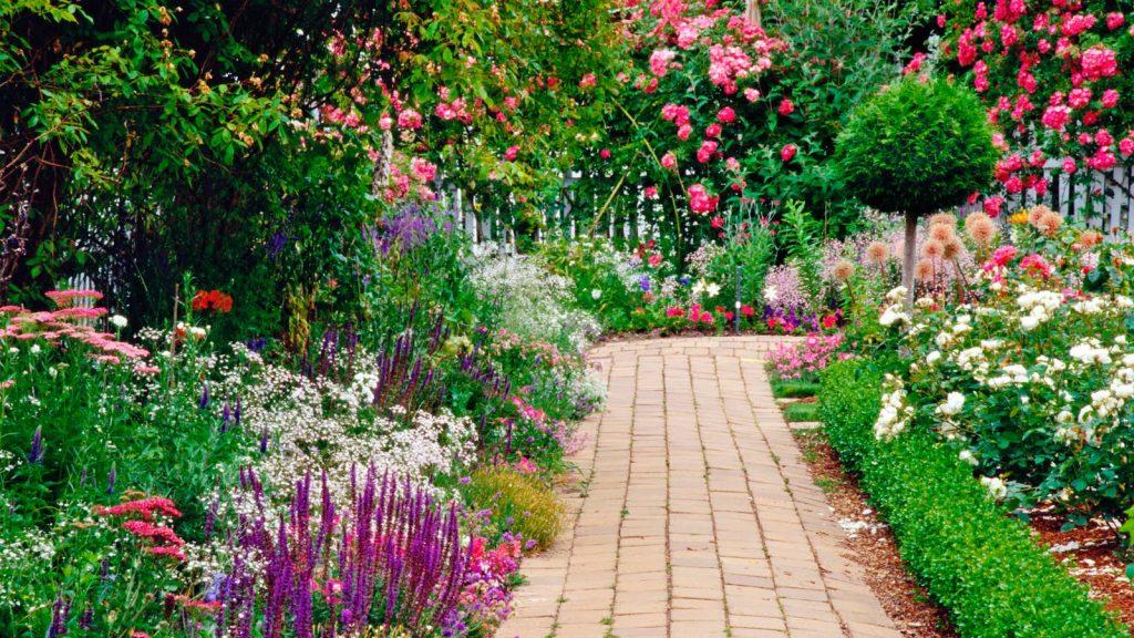 Jardín hermoso