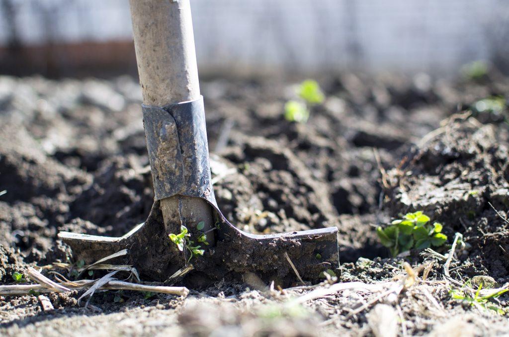 pala jardineria tierra