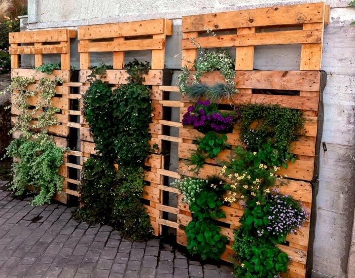 jardin vertical palets de madera